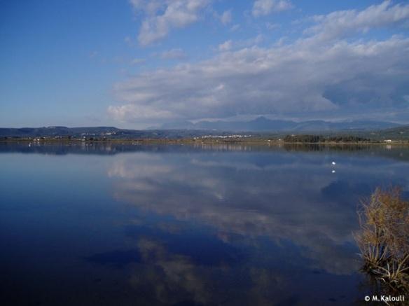 Εικόνα 1: η λιμνοθάλασσα της Γιάλοβας (http://www.ornithologiki.gr/)